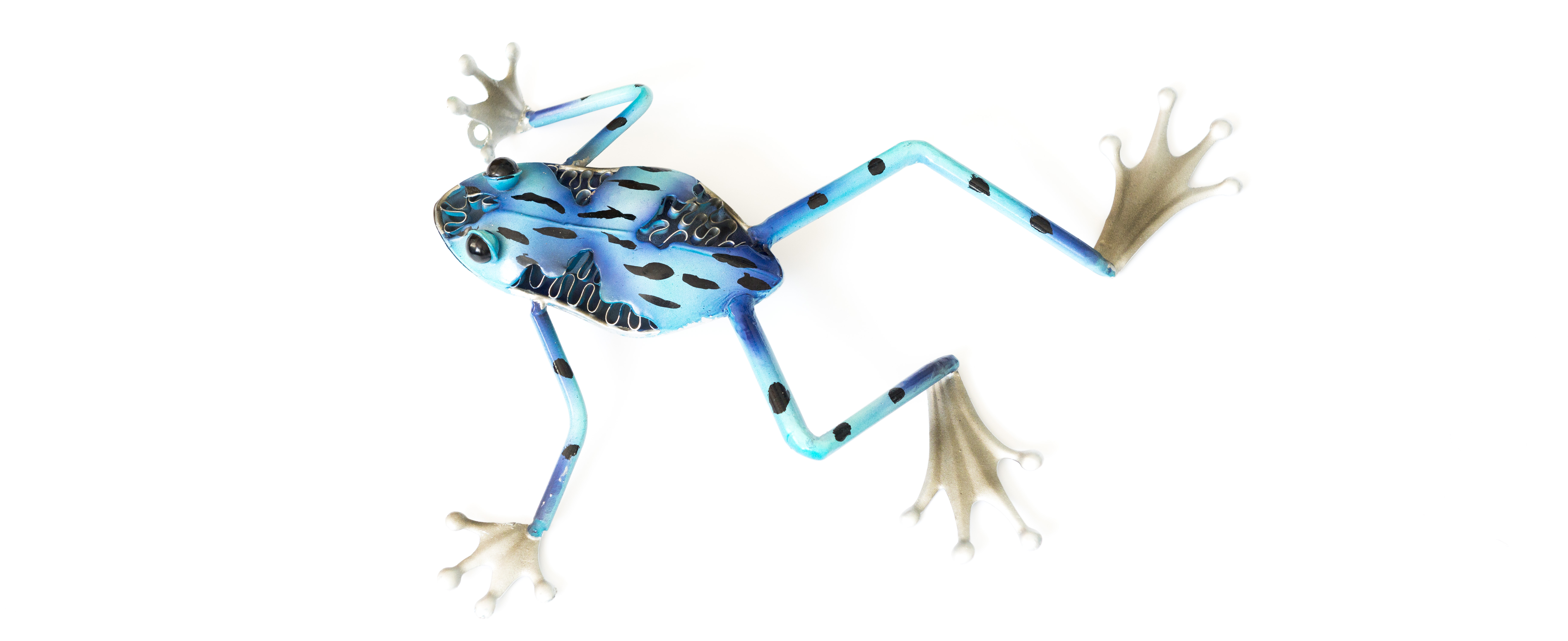 blue-frog-077