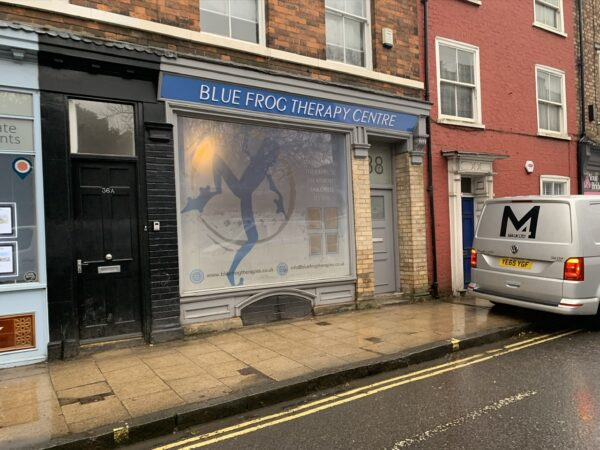 Blue frog therapy centre